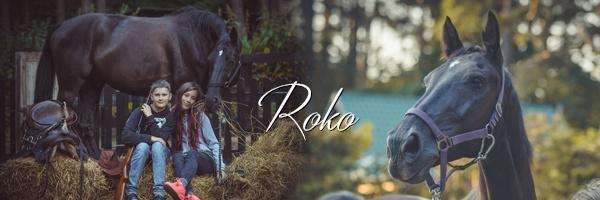 Konie zWilczego Rancza wBorkowie, Roko