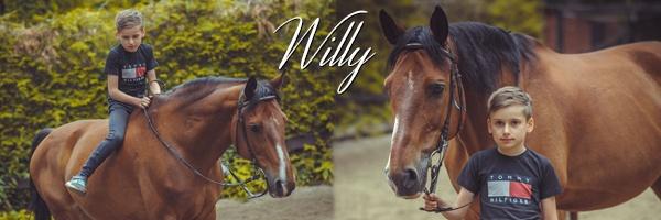 Konie zWilczego Rancza wBorkowie, Willy